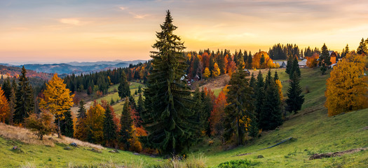 panorama of village outskirts in autumn. lovely landscape in mountains at sunset with gorgeous sky