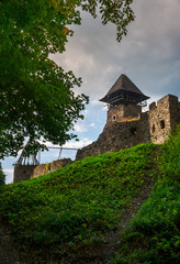 ruins of Nevytsky Castle on grassy hill. medieval fortress is popular tourist destination of TransCarpathia, Ukraine