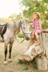 A nice little girl with light curly hair in a vintage plaid dress and a straw hat and a gray horse. Rural life in autumn. Horses and people