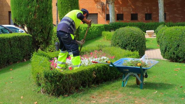 Jardinero con uniforme trabajando cuidando las flores y las plantas verdes de un precioso jardín. Fotos o imágenes de gente en sus trabajos