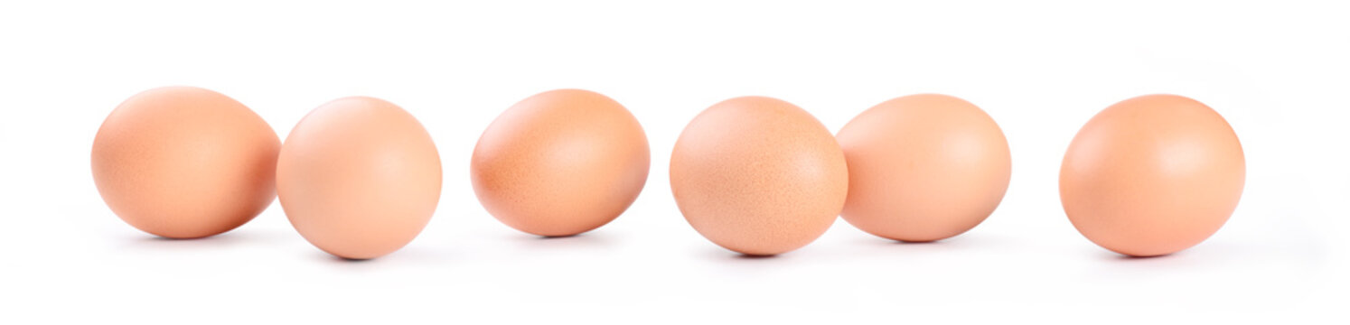 Six chicken eggs on white background