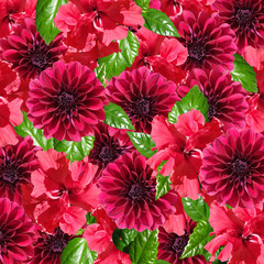 Beautiful floral background of hibiscus and dahlias