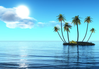 Group of palms on a small island