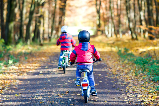 Two little kid boys in colorful warm clothes in autumn forest park driving bicycle. Active children cycling on sunny fall day in nature. Safety, sports, leisure with kids concept. Best friends having