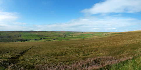 wide panoramic view of yorkshire dales landscape with fields and farmhouses enclosed by stone walls with open moorland above with bright blue sky and clouds