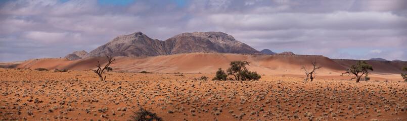 Door stickers Lavender Sossusvlei Namib Desert, in the Namib-Naukluft National Park