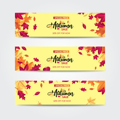 Autumn sale banner with leaves. For shopping promo web banner.