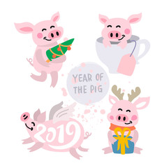 Cute pigs Vector