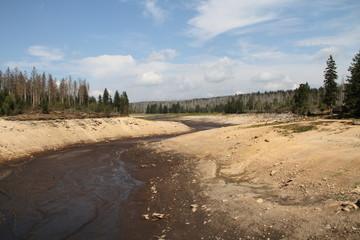 ausgetrockneter Odersee 3