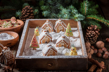 Beautiful Christmas gingerbread village with cottages and snow