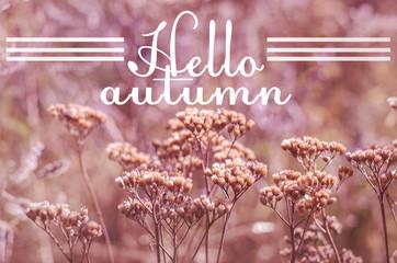 Text hеllo autumn on blurred autumn photo.