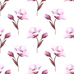 Pink flowers on white. Seamless background Botany Spring