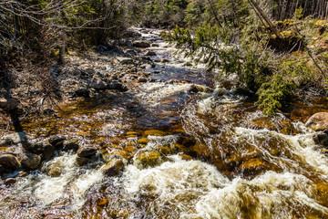Deer Arm River runs below Gros Morne Mountain, Gros Morne National Park, Newfoundland, Canada
