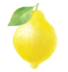 whole lemon, watercolor hand-drawn drawing of a fruits, isolated illustration on a white background