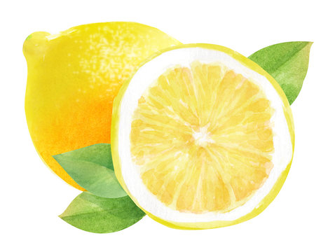 whole lemon and half a lemon, watercolor hand-drawn drawing of a fruits, isolated illustration on a white background