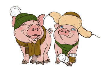 Pigs in winter clothes hat and scarf, vector illustration
