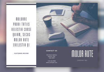 Gray Business Trifold Layout