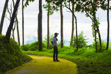 Traveler man backpack in the forest at Nan, Thailand; Nature Rainforest; Travel concept.