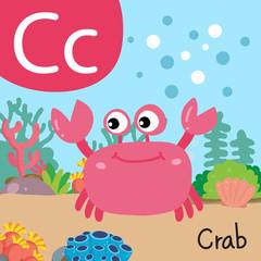 crab drawing line vector design