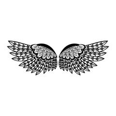 Bird wings isolated in black and white