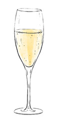 Illustration with a glass of sparkling wine isolated on white background. Champagne wine collection. Gourmet drinks.