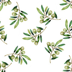 Watercolor olive branch isolated on white background.