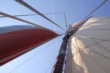 team spirit esprit d'équipe leader voilier régate vieux gréement compétition