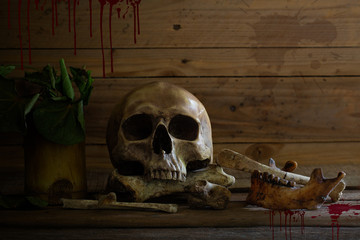 Old skull and bones with wither leaf in bamboo vase on wooden plank