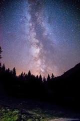 Milchstraße, Feldweg und schwarze Baum-Silhouetten, Nachtaufnahme