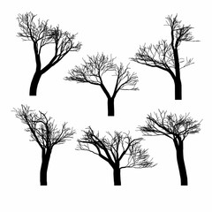 Set of black naked trees silhouette set. Hand drawn isolated.