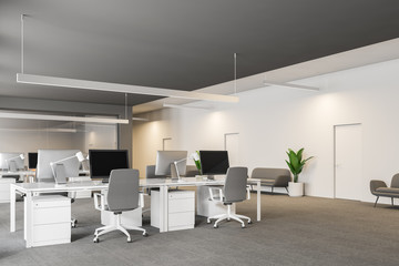 Gray and white office workplace with sofas