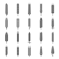 Wheat ears icon set, agriculture symbol collection
