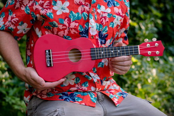 ukulele and man together in one picture