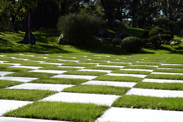 summer day, in the park a large chess field with green grass and white squares