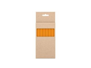 Pencils Set in cardboard box Mockup