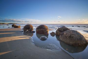 Aluminium Prints New Zealand Early Morning On Famous Moeraki Boulders, Koekohe beach,Otago, South Island, New Zealand