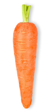 Baby carrot isolated on white clipping path