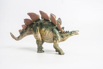dinosaur , Stegosaurus  on white background