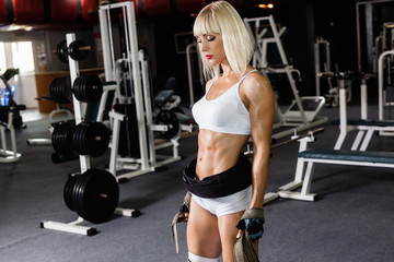 pretty sophisticated fitness model trains in the gym. The girl is engaged in the gym