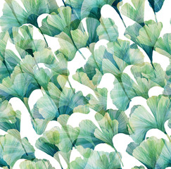 Ginkgo biloba Seamless vintage pattern. Wallpapers with tropical leaves
