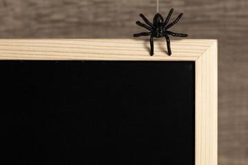 Halloween background concept. Detail of blackboard and black spider