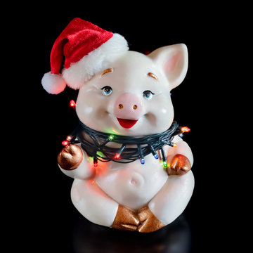 Pig in Santa's Christmas hat. Isolated on black background