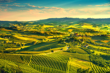 Photo sur Plexiglas Jaune Langhe vineyards sunset panorama, Grinzane Covour, Piedmont, Italy Europe.