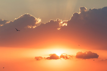 Sunset with beautiful sun rays.