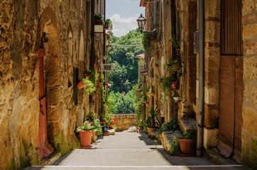 Old street in Pitigliano full of plants