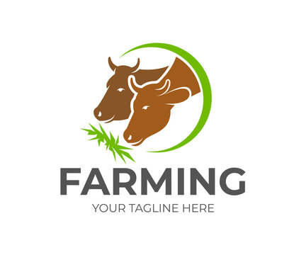 Farming, cattle-breeding, stock raising and cows eat hay in circle, logo design. Animal and pet, farm, agricultural and agriculture, vector design and illustration