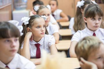 students of primary school