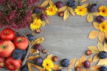 Fototapeta Jesienne tło, obramowanie z liści, jabłek, śliwek, wrzosu, kasztanów, liści i żółtych kwiatów