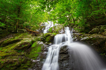 A waterfall runs down a cliff covered in moss in Shenandoah National Park, VA.