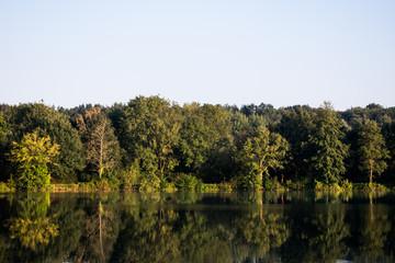 Klarer See bei Sonnenschein in dem sich Bäume vom Ufer spiegeln. Standort: Deutschland, Nordrhein-Westfalen, Pröbstingsee